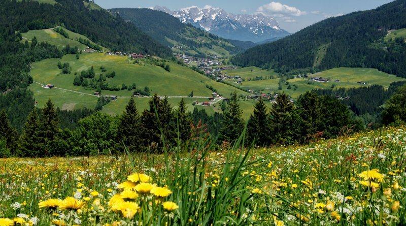 Sommer in Wildschönau